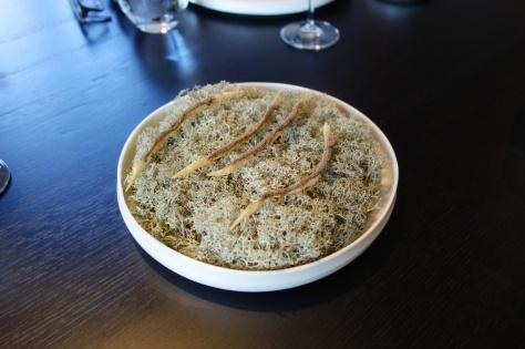 Fermented apple - Chanterelle